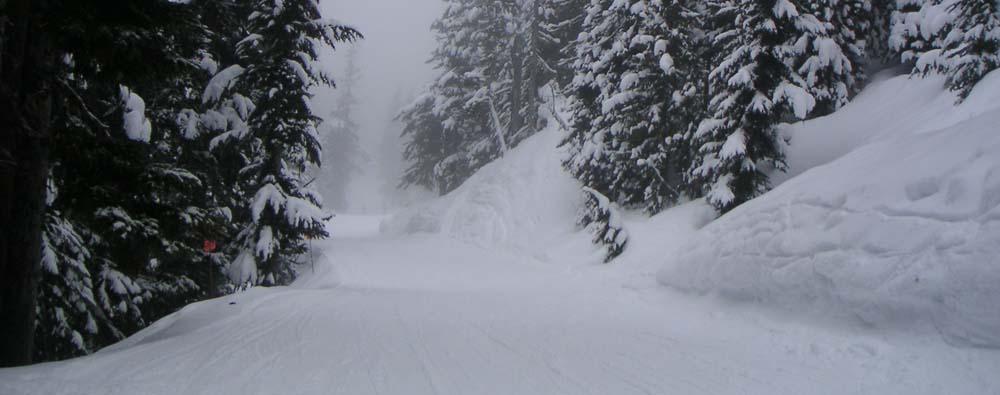 Whistler trail